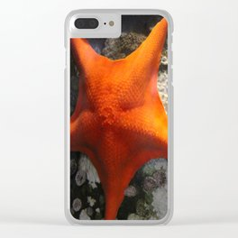 Starfish Duet Clear iPhone Case