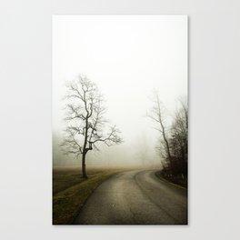 Fog Ahead Canvas Print