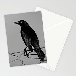 Carib Grackle Stationery Cards
