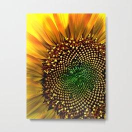 Macro Sunflower Metal Print