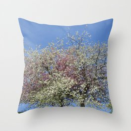 Pink and White Blossom - Blue Sky Throw Pillow