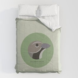 Five-striped sparrow Comforters