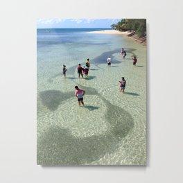 School of Fish, Green Island, Australia Metal Print