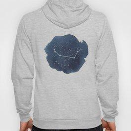 aries constellation zodiac Hoody