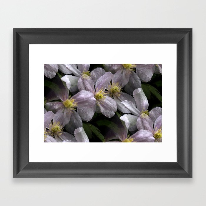 the smell of spring -2- Framed Art Print
