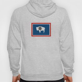 wyoming state flag united states of america country Hoody