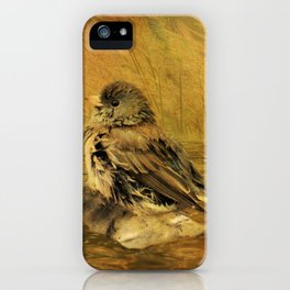 The Bathing Junco iPhone Case