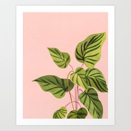 Upstart / Tropical flora Art Print