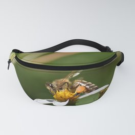 Spreading the Love Fanny Pack