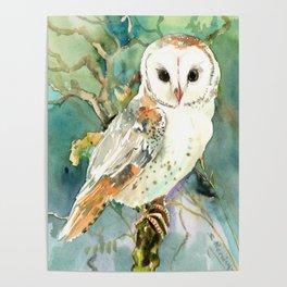 Barn Owl, woodland design owl Poster