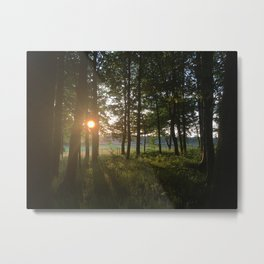 Dusk to Dawn Metal Print