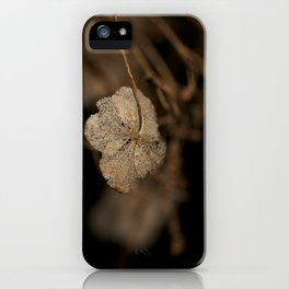Withered leaf iPhone Case
