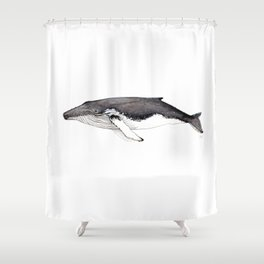 North Atlantic Humpback whale Shower Curtain