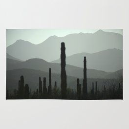 Baja California Rug