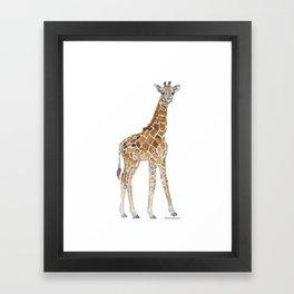 Baby Giraffe Watercolor Painting Framed Art Print