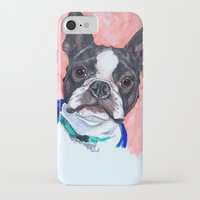 boston terrier iPhone & iPod Cases featuring Boston Terrier by A.M.