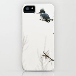 Belted Kingfisher Looking for Prey on a Foggy Day iPhone Case