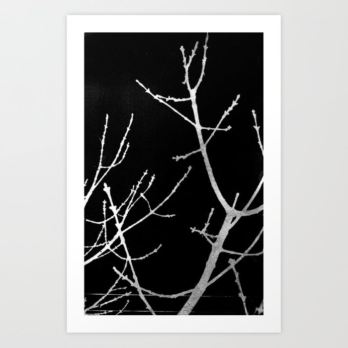 Graphic Twigs Art Print