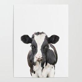 Cow Art Poster