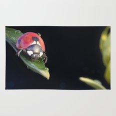 Ladybug Journey Rug