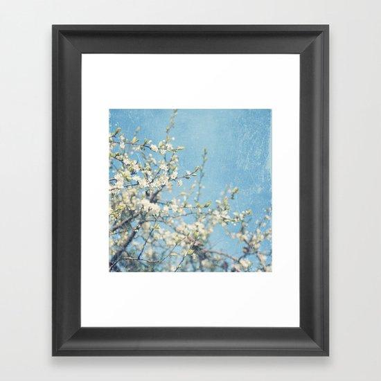 White and Blue Spring no. II Framed Art Print