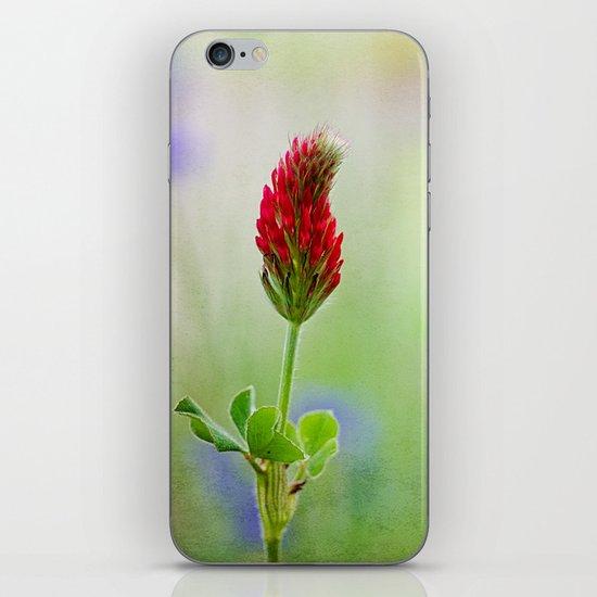 Nature's Painbrush iPhone & iPod Skin