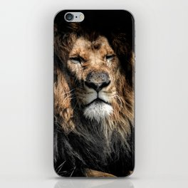 Old Lion iPhone Skin
