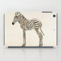 zebra iPad Cases featuring zebra by bri.buckley