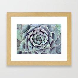 Succulent Painting Framed Art Print