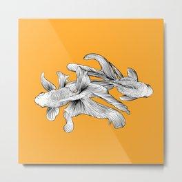orange fish Metal Print