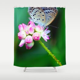Butterfly and Flower  #buy art  #decor  #society6 Shower Curtain