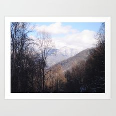 Laurel Falls Trail Art Print