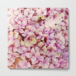 Pastel pink lilac botanical hydrangea floral Metal Print