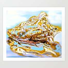 Sea Shells and Light Art Print