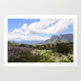 Stellenbosch Art Print