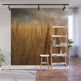 Harvest Time - Golden Wheat in Colorado Field Wall Mural