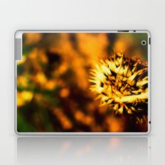 Thistle Laptop & iPad Skin