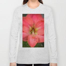 Amaryllis by Teresa Thompson Long Sleeve T-shirt