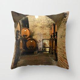 Wine Cellar Throw Pillow