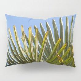 Palm Fronds - Villefranche II Pillow Sham