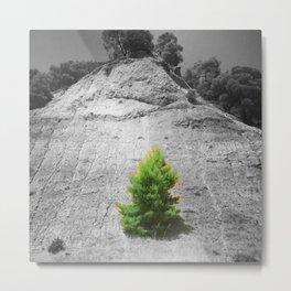 tree1.1 Metal Print