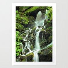 Smoky Mountains Waterfall 2 Art Print