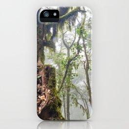 Centenary Tree. Garajonay. Foggy Forest iPhone Case