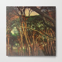 Through Tangled Woods Metal Print