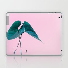 Pink Plant Laptop & iPad Skin