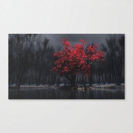 Vernalis Canvas Print
