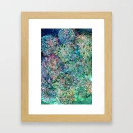 Banksia Cool Blue Framed Art Print
