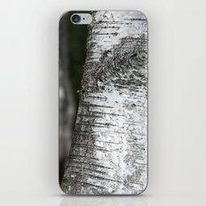 birches II iPhone Skin