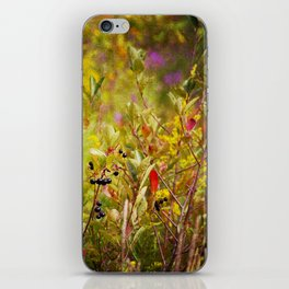 Fall Field iPhone Skin