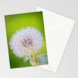 Dandelion - macro Stationery Cards